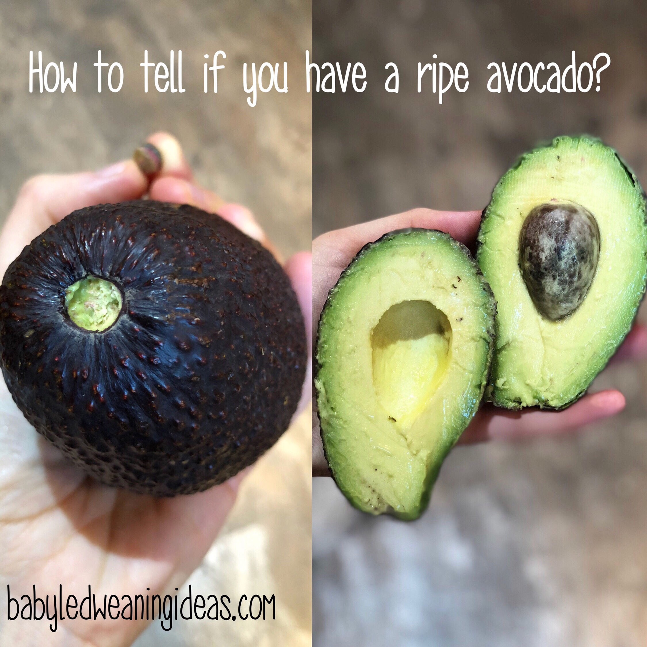 How To Tell If You Have A Ripe Avocado Baby Led Weaning Ideas