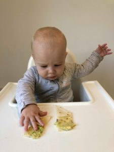 How to offer flat bread with avocado to a 6 month old+